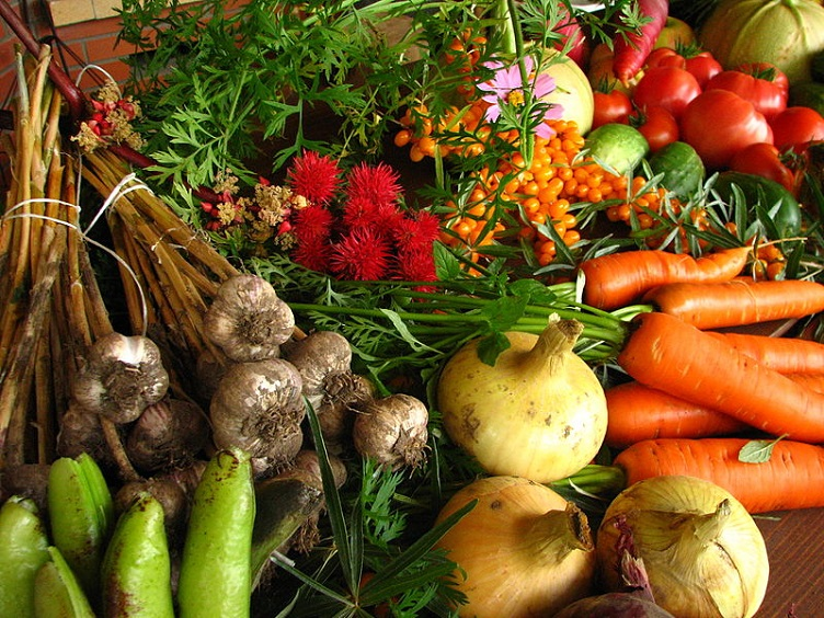 Farm-Ecologically grown vegetables-author Elina Mark CC license final