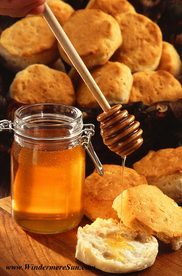Honey dipper and American biscuit final