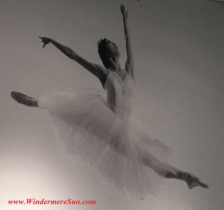 Orlando Ballet School South Campussingle ballet dancer poster2 at 7988 Via Dellagio Way, Suite 204., Orlando, FL final