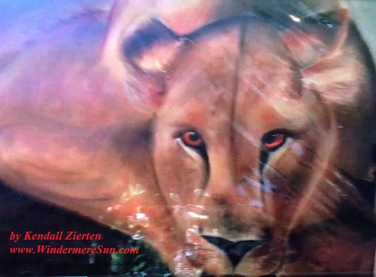 Art Show of Windermere Prep School- art work1 of Kendall Zierten final