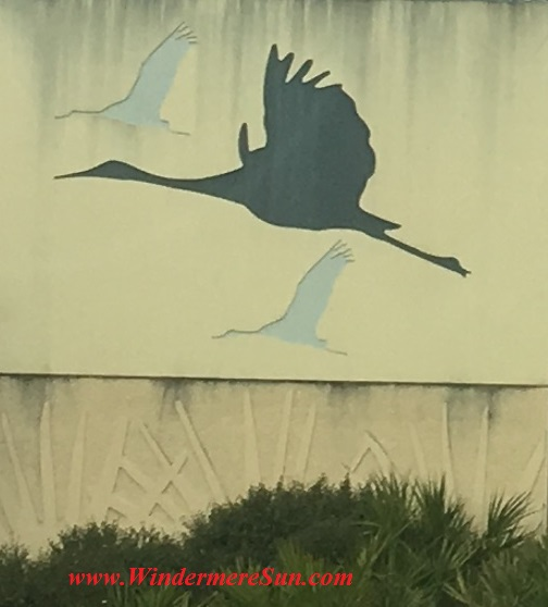 Cranes along Central Florida expressway cropped final