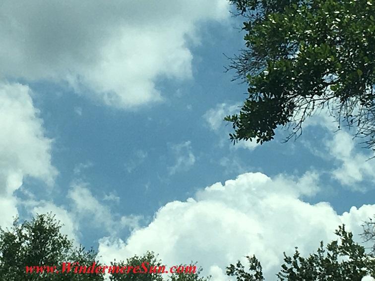 Florida Cloud33 final