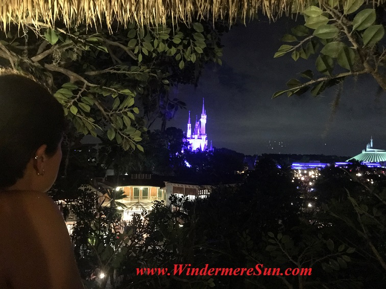 Disney-MagicKingdom-Marina watches Castle July4,2016 from Robinson Cruiso Treehouse final
