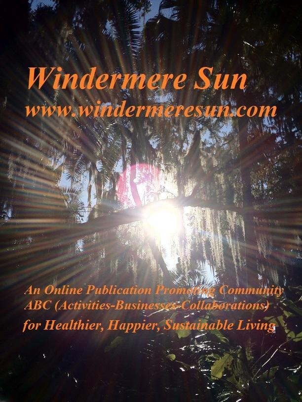 Windermere Sun concentric sunbeams Vistaprint card8