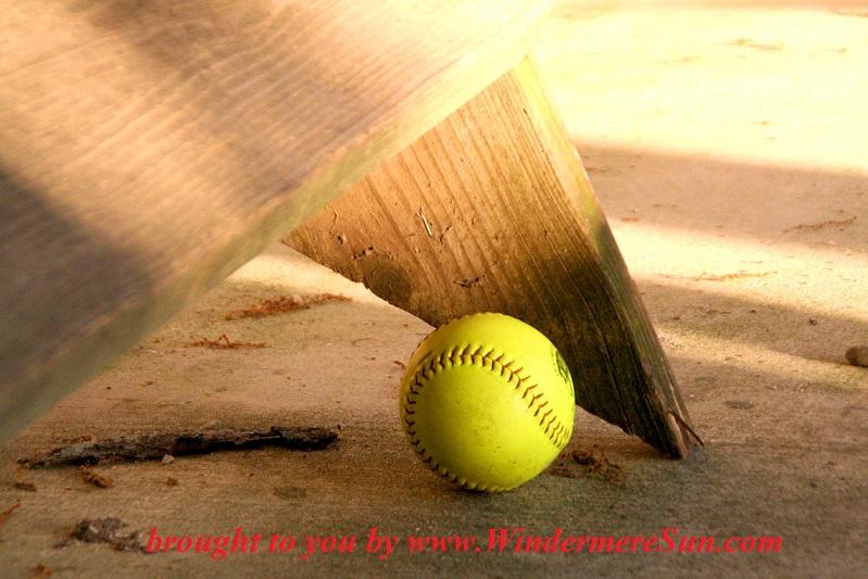 baseball-1-1414904, freeimages, credit-Taryn Kaiser final