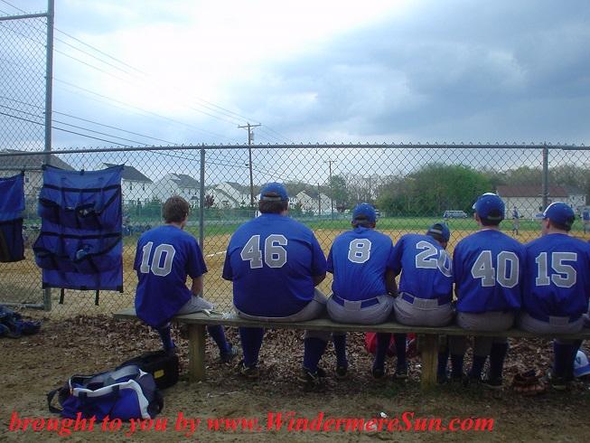 baseball-bench-1542180, freeimages, credit-charis garwood final