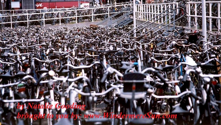 bike-dutch-bikes-1462233, freeimages, by Natalie Gooding final