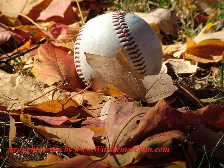 fall-baseball-1566203, freeimages, credit-Ned Horton final