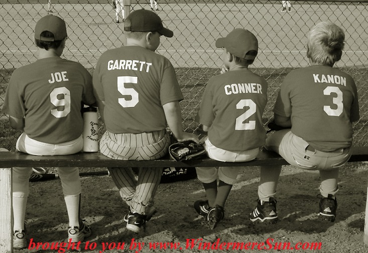 little-league-baseball-1499148, freeimages, credit-bob johnson final