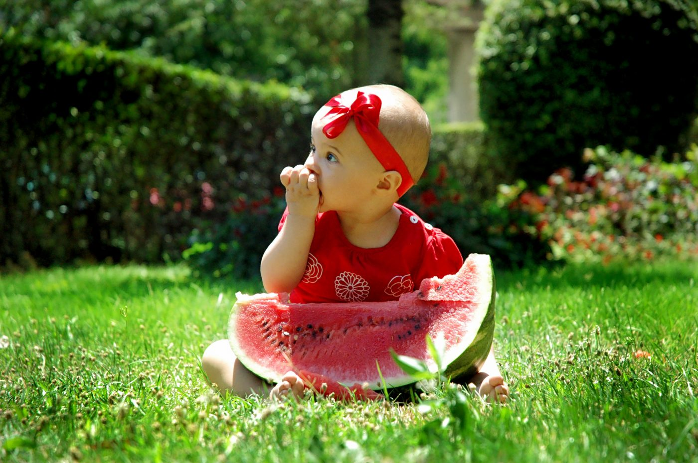 watermelon-my-sweet-baby-1321799-freeimgaes-by-simona-balint