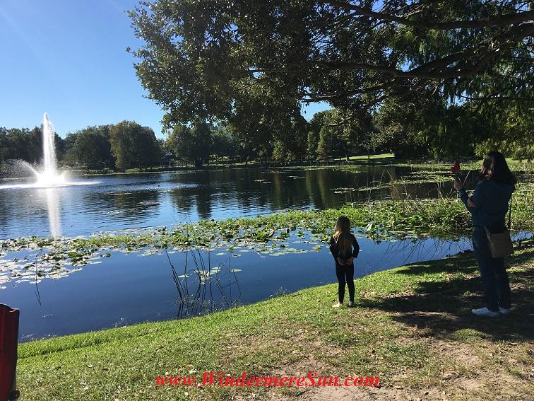 lake-lily-final