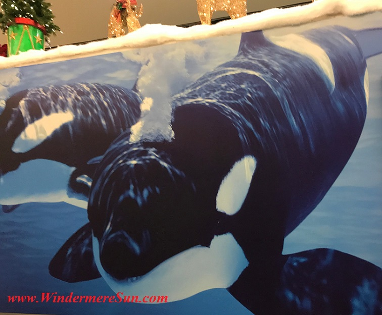 orlando-international-airport-seaworld-final