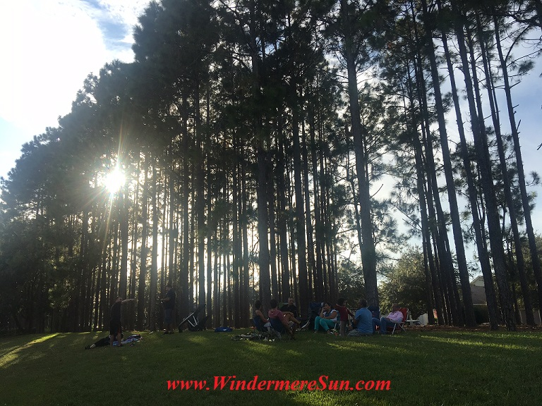 picnic-under-the-tree-final