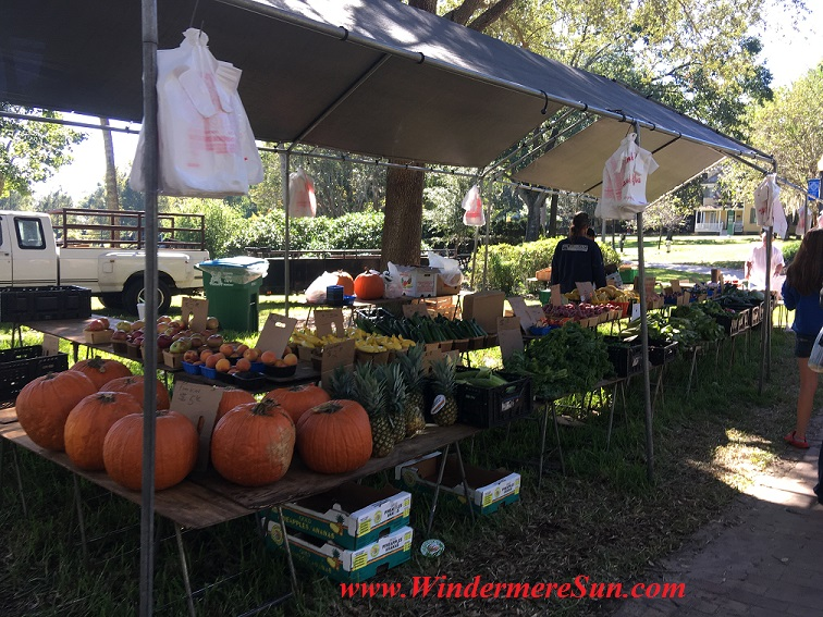 produce-w-pumpkins-final