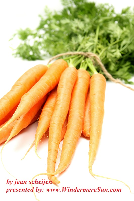 carrots-1326148-freeimages-by-jean-scheijen-final