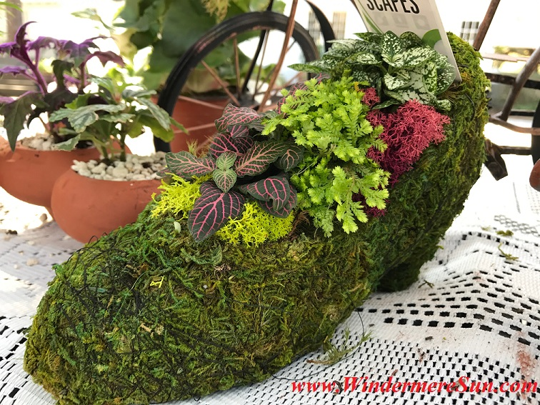 Closeup of high heeled planter final