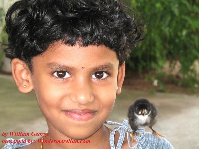 bird pet, kids-having-fun-1389773, freeimages, by William George final