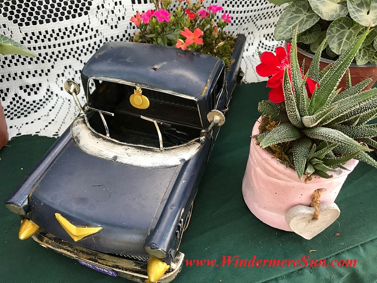 truck planter with aloe final