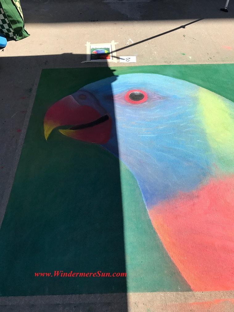 Bird s beak final
