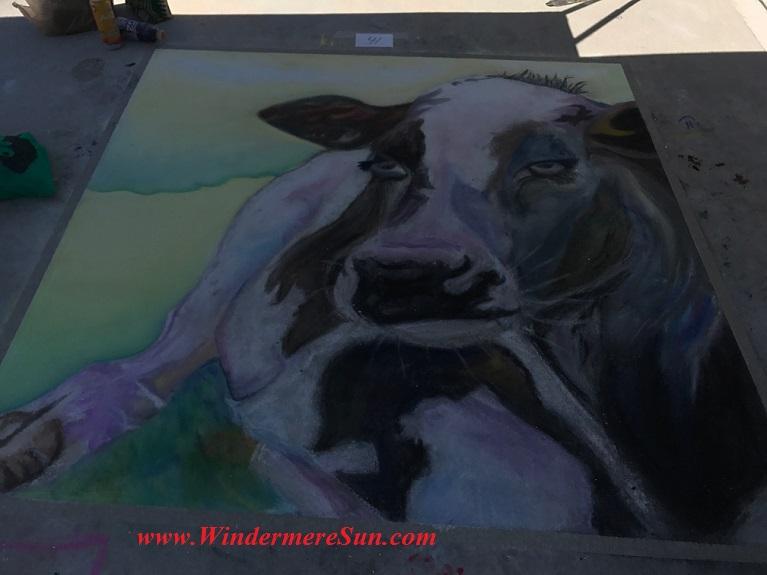 Cow #41art work-2 final