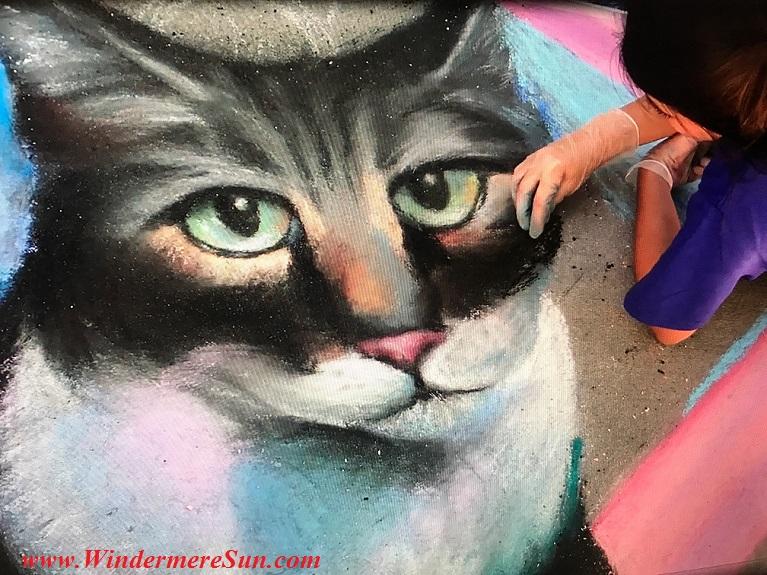 Meow art work final