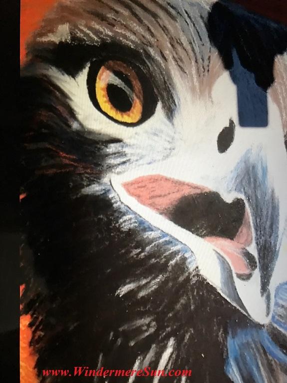 Owl art work final