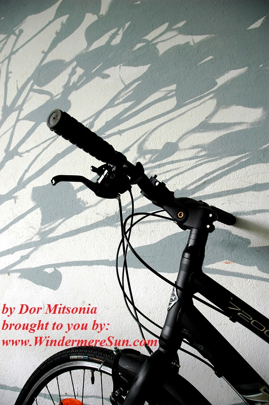 bicycle-1185713, freeimages, by Dora Mitsonia final