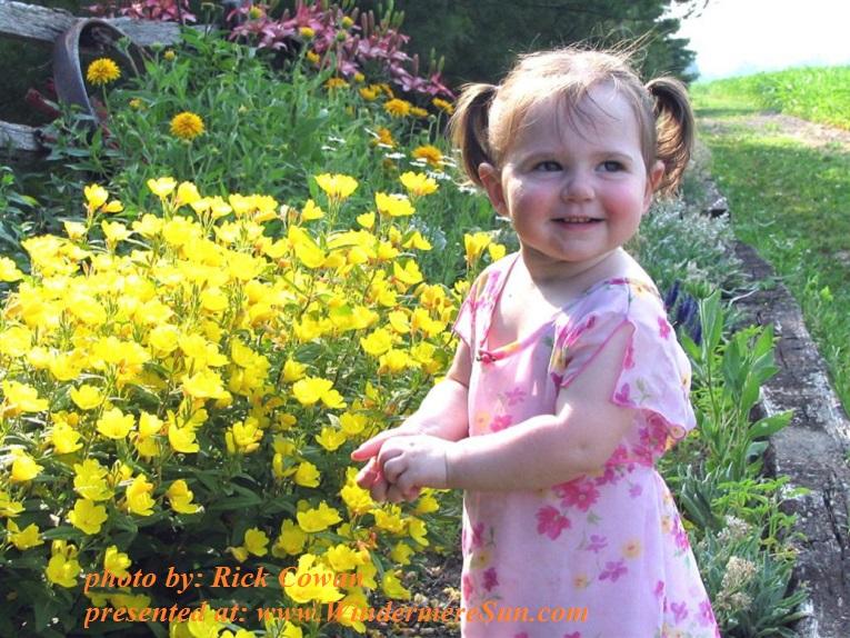 abbey-in-flowers-1399110, by Rick Cowan final