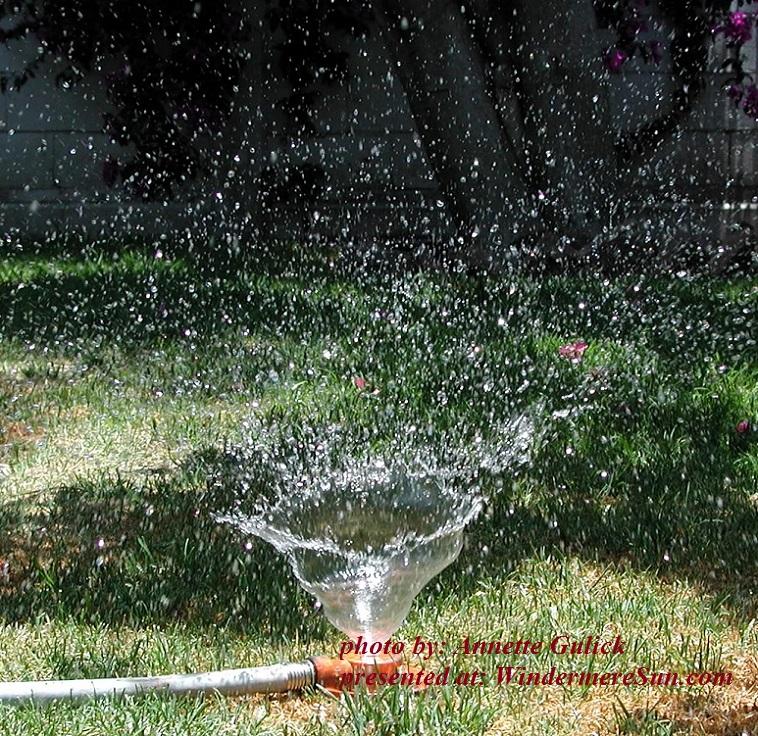 sprinkler-1-1454517, by Annette Gulick final