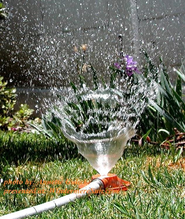 sprinkler-3-1454518, by Annette Gulick final