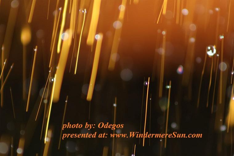 sprinkler-light-at-work-1164046, by Odegos final