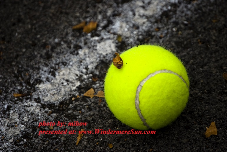 tennis-ball-1152092, by mihow final