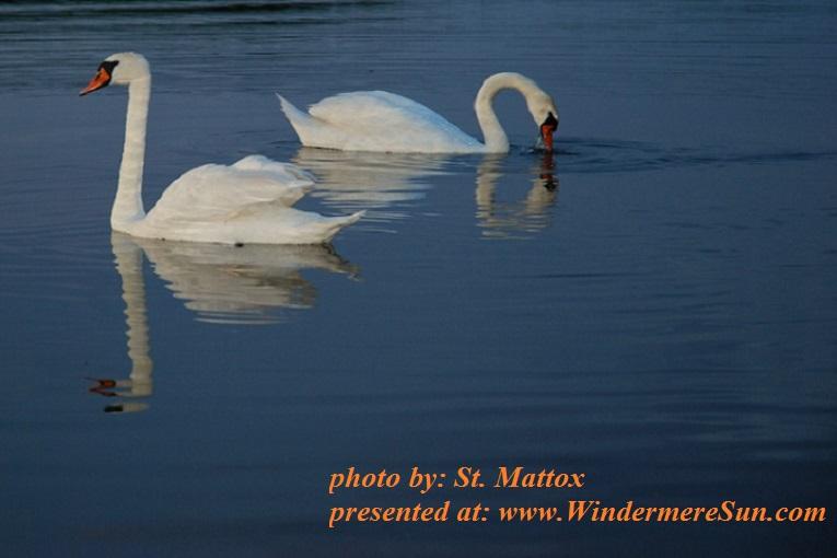white-couple-1245557, by St. Mattox final