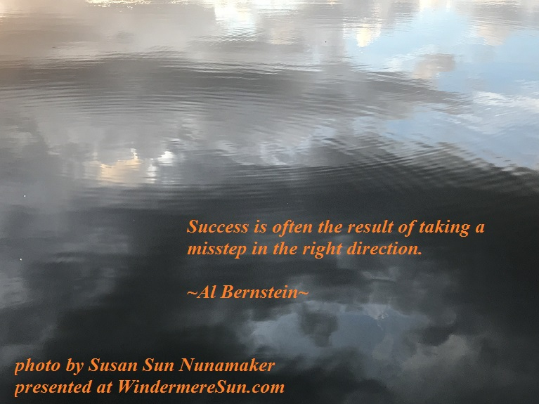 Total Reflection-Success is often the result of...quote of 8-26-2017 final final