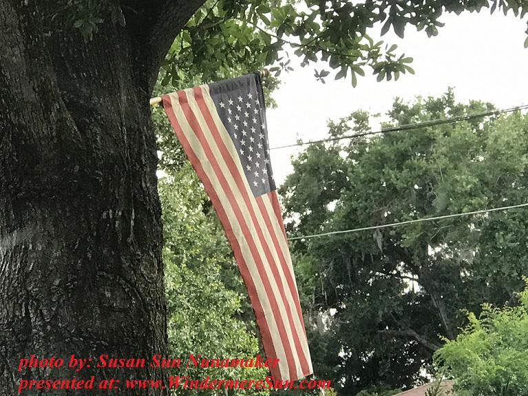 flag by tree final