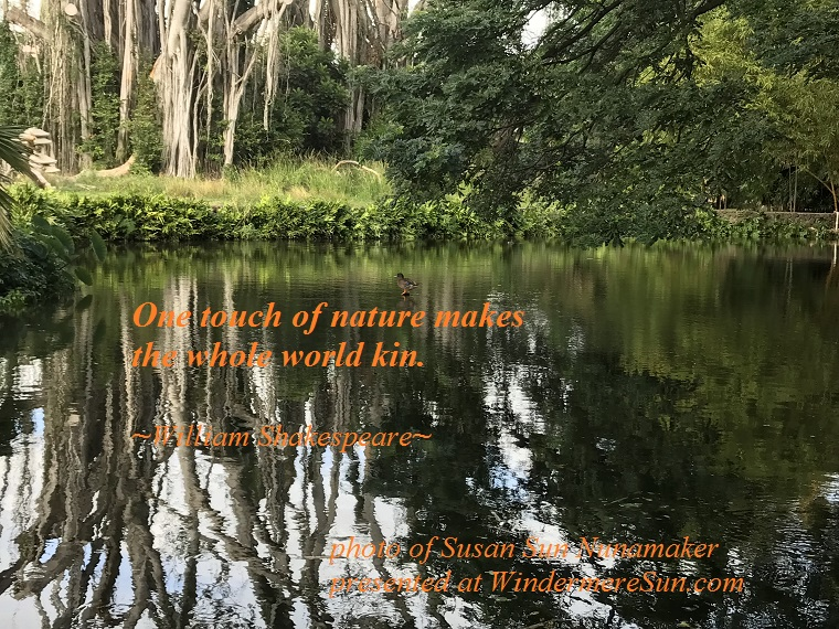 one touch of nature makes the whole world kin, quote of 12-30-2017, quote of William Shakespeare final