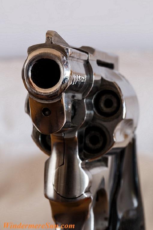 firearm-handgun-revolver-gun-53351 final