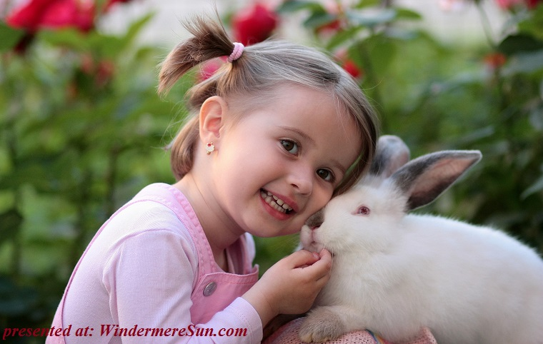 pet of 03-24-2018,girl-rabbit-friendship-love-160933 final