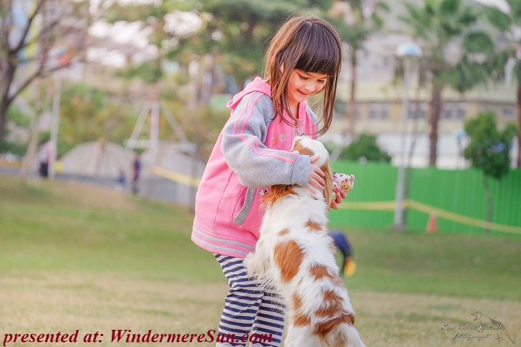 pet of 04-14-2018,affectionate puppy, animal-child-contact-332974 final
