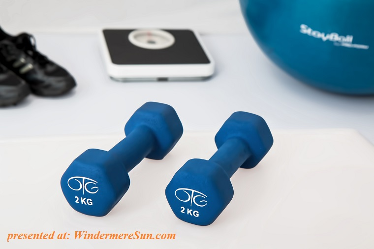 physiotherapy-weight-training-dumbbell-exercise-balls-39671 final