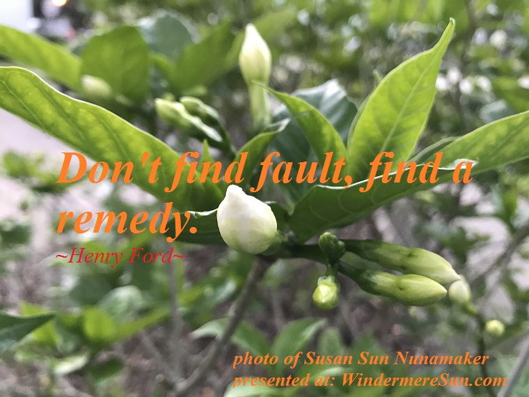 quote of 04-28-2018, Don't find fault, find a remedy, quote of Henry Ford, photo of Susan Sun Nunamaker final
