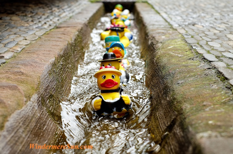 bath-ducks-blur-colorful-106144 final