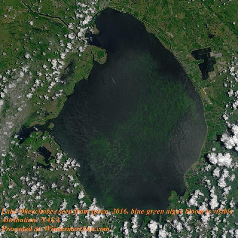 lake_okeechobee_oli_2016184_lrg, 2016, seen from space, NASA, PD final