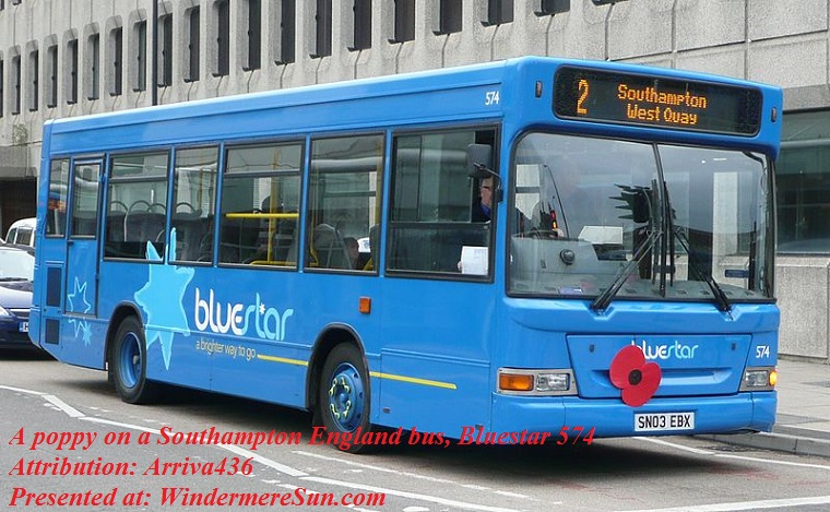 Poppy on a Southampton England bus, Bluestar_574, attribution-Arriva436 final