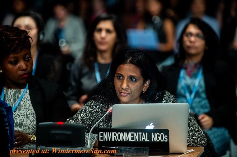 Environmental NGOs final
