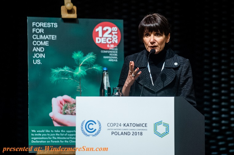 Speaker for Forests For Climate final