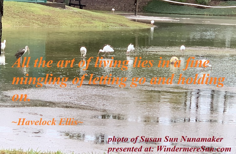 quote of 12-22-2018, All the art of living lies in a fine mingling of letting go and holding on.quote of Havelock Ellis, photo of Susan Sun Nunamaker final