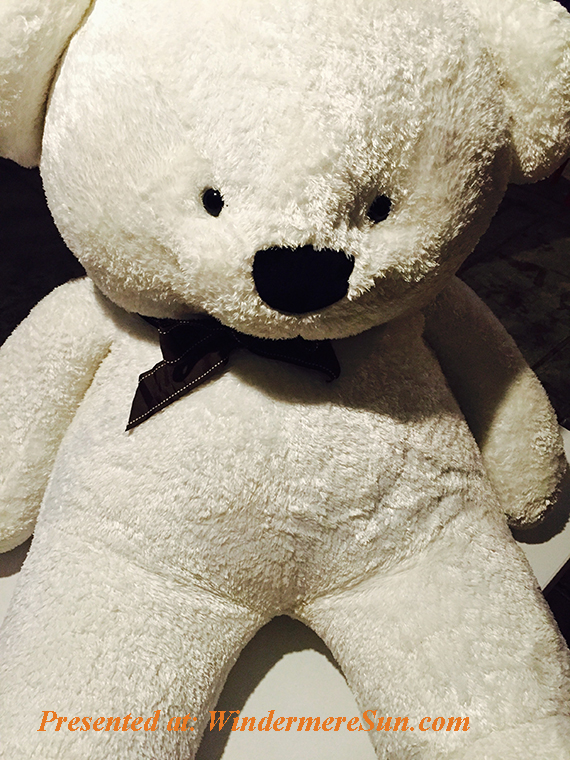 bear-stuffed-toy-teddy-bear-101995 final