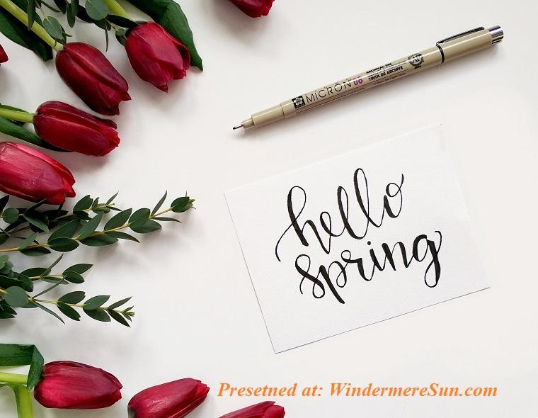 hello, spring, background-ballpen-bloom-920147 (1) final