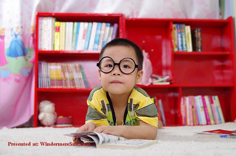 adorable-blur-bookcase-261895 final